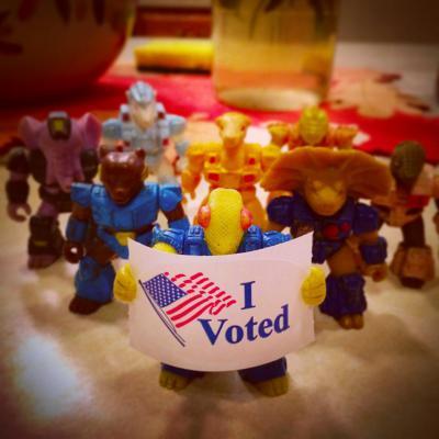 Chameleon Vote.JPG