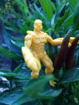 scorpion_garden_2014-08-27.png