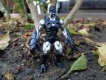 Scorpion_black_silver.jpg