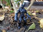 Scorpion_black_mono.jpg